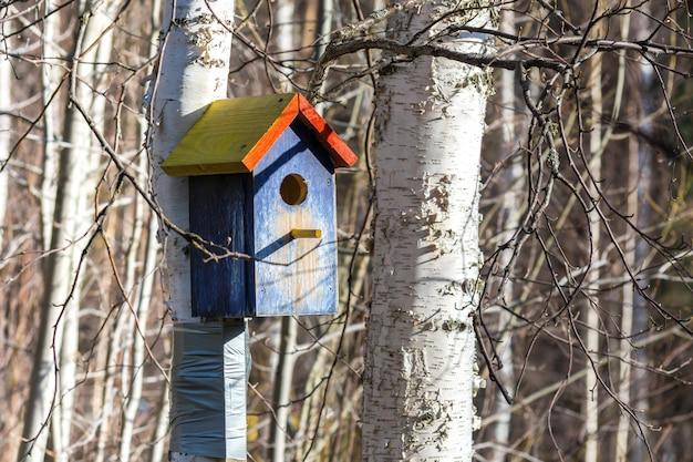 Belle Mangeoire à Oiseaux En Bois Dans Le Parc Photo Premium
