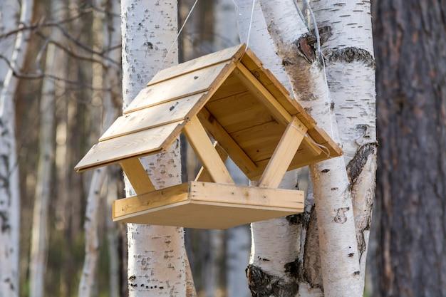 Belle Mangeoire Pour Oiseaux Et écureuils Dans Les Bois Photo Premium