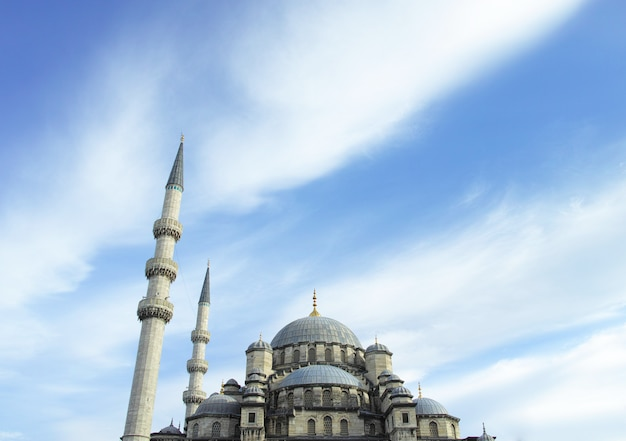 Belle mosquée Photo gratuit