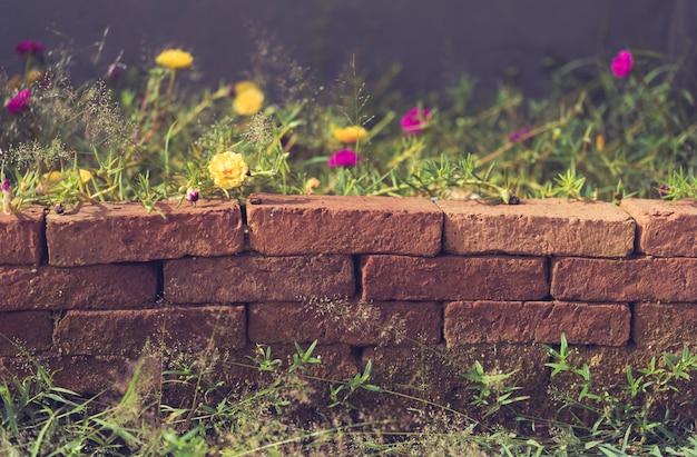 Belle petite fleur jaune sur mur de briques grunge, effet rétro Photo Premium