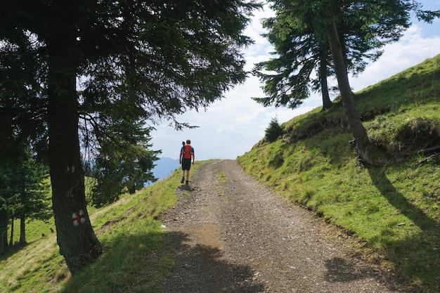 Belle Photo D'un Randonneur Mâle Avec Un Sac à Dos De Voyage Rouge Marchant Sur Le Chemin Dans La Forêt Photo gratuit
