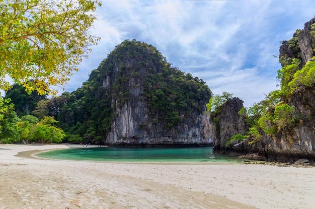 Belle plage de sable tropicale et feuillage vert luxuriant sur une île tropicale Photo Premium