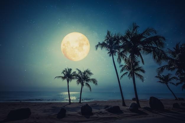 Belle Plage Tropicale Fantastique Avec étoile Et Pleine Lune Dans Le Ciel Nocturne. Photo Premium