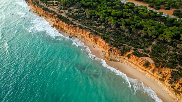 Belle plage tropicale et la mer Photo gratuit