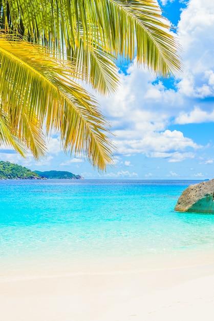 Belle plage tropicale Photo gratuit