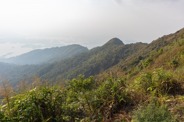 Belle scène de montagne et arbre au parc national de thong pha phum, kanjanaburi, thaïlande Photo Premium