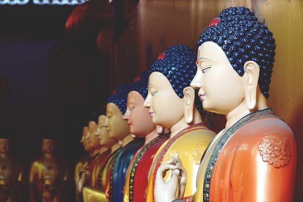 Belle statue de sept bouddha se bouchent Photo Premium