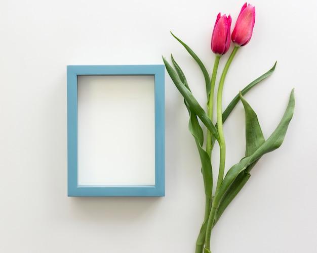 Belle Tulipe Rouge Avec Cadre Blanc Sur La Surface Blanche Photo gratuit