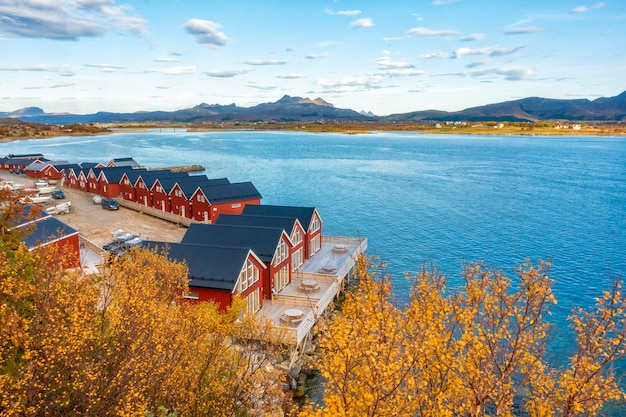 Belle Vue Colorée Du Paysage Dans Les îles Lofoten Photo Premium
