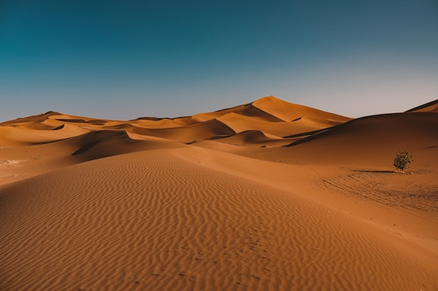 Belle Vue Sur Le Désert Tranquille Sous Le Ciel Clair Capturé Au Maroc Photo gratuit