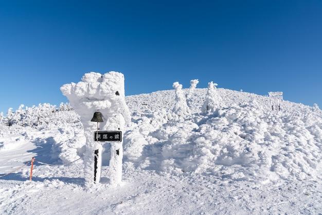 Belle vue panoramique sur le sommet de la montagne zao, yamagata, tohoku, japon avec la neige en hiver. Photo Premium