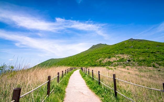 Belle Vue Sur Le Parc National De Mountain Mudeungsan Gwangju, Corée Du Sud. Photo Premium