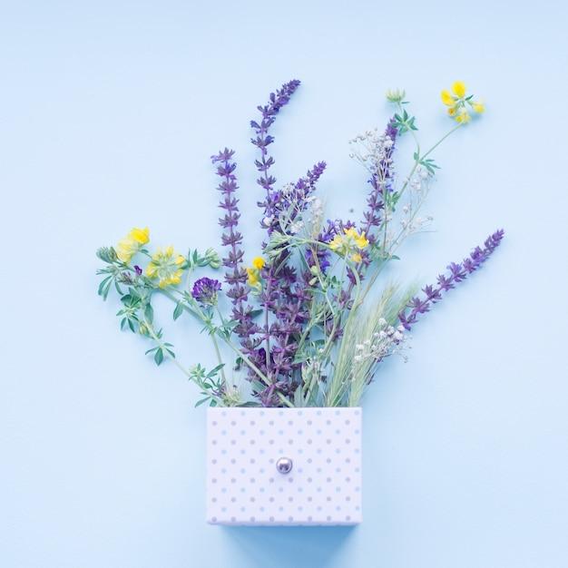 Belles fleurs de lavande dans la boîte à pois sur le fond bleu Photo gratuit