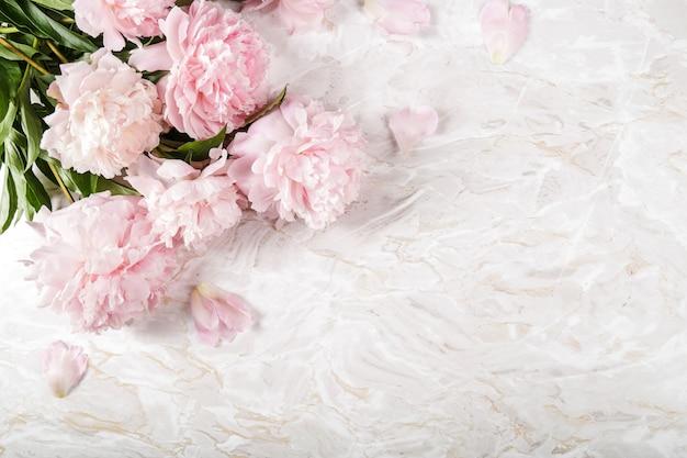 De Belles Fleurs De Pivoine Fraîches Photo gratuit