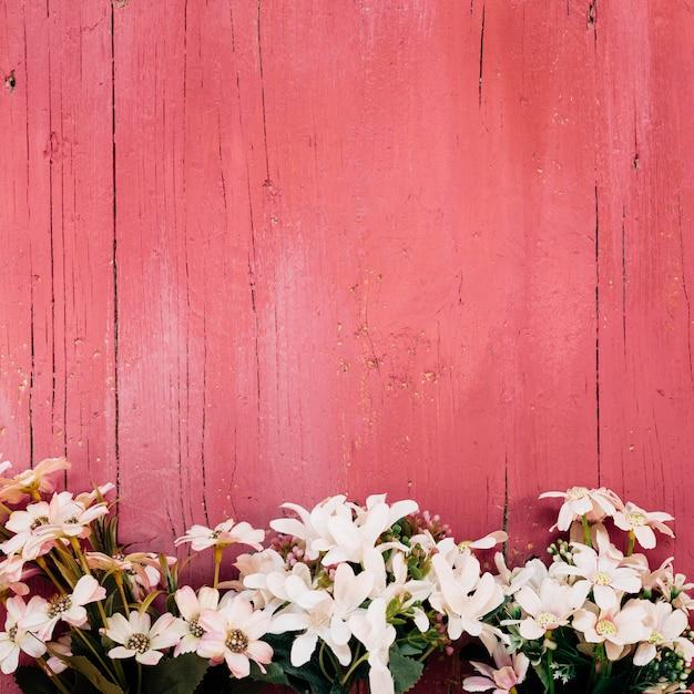 Belles Marguerites Sur Plancher En Bois Photo gratuit