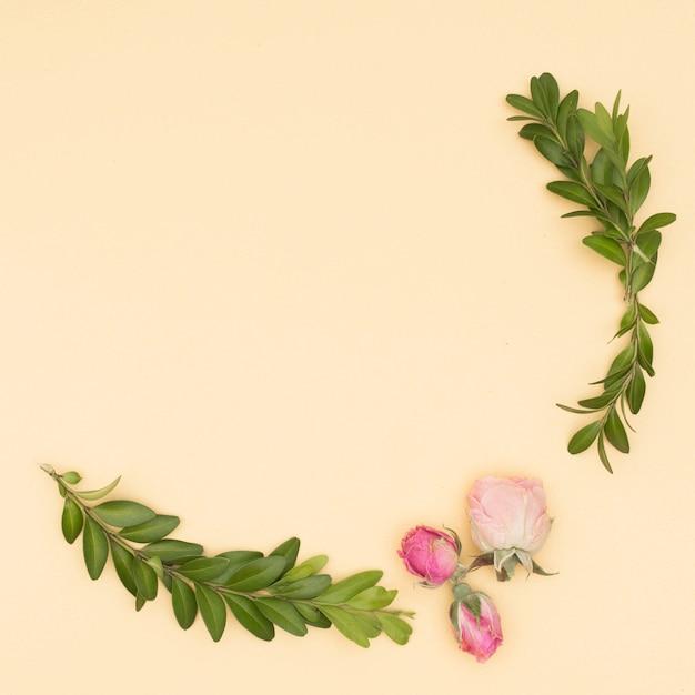 Belles roses et feuilles brindille sur fond beige Photo gratuit