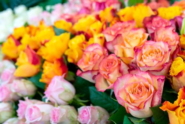 De belles roses pour le mariage et les fiançailles. Photo Premium