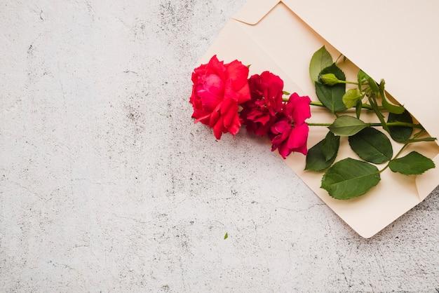 Belles roses rouges dans l'enveloppe ouverte sur fond blanc grunge Photo gratuit