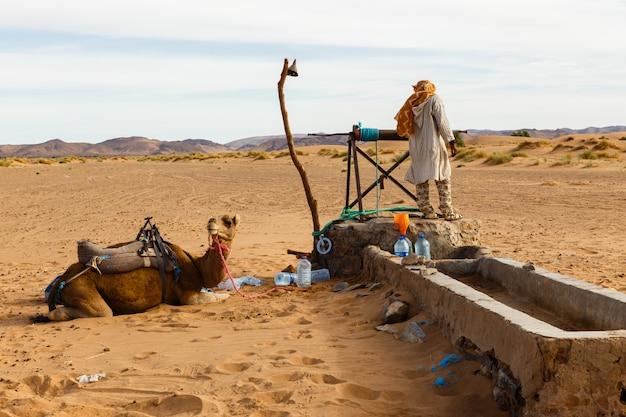 Berbère et chameau près du puits Photo Premium
