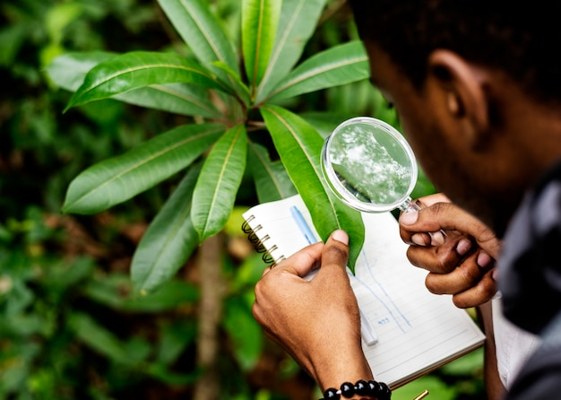 Biologiste dans une forêt Photo gratuit