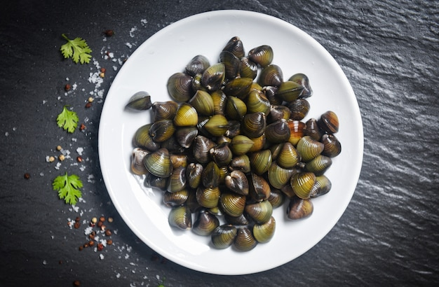 Les bivalves d'eau douce de mollusques shijimi tels que les coquilles de palourdes sur une assiette blanche avec des herbes et des épices Photo Premium