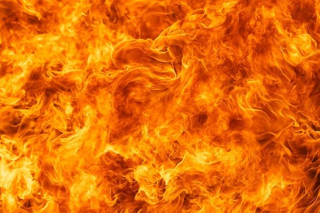 Blaze Texture De Flamme De Feu Photo Premium