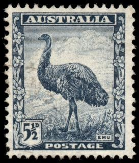 Bleu emu timbre Photo gratuit