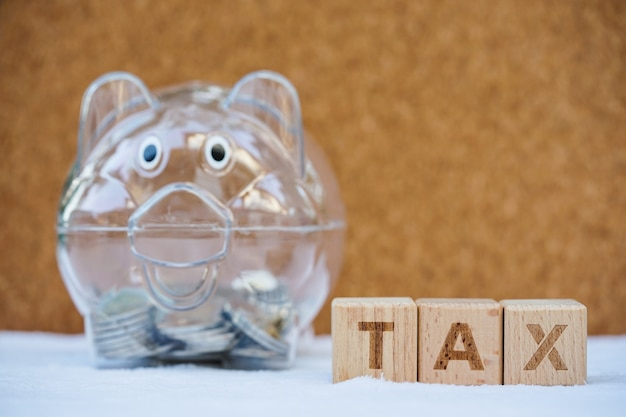 Bloc De Mot Tax Avec Tirelire. Revenus, Dépenses, Impôts Et Données Financières. Photo Premium
