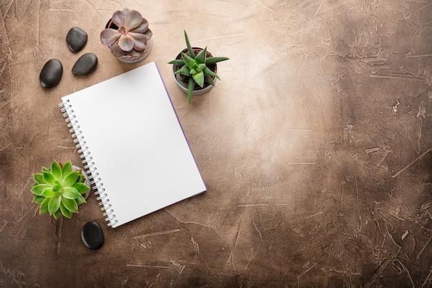 Bloc-notes et plantes succulentes sur la table vue de dessus Photo Premium