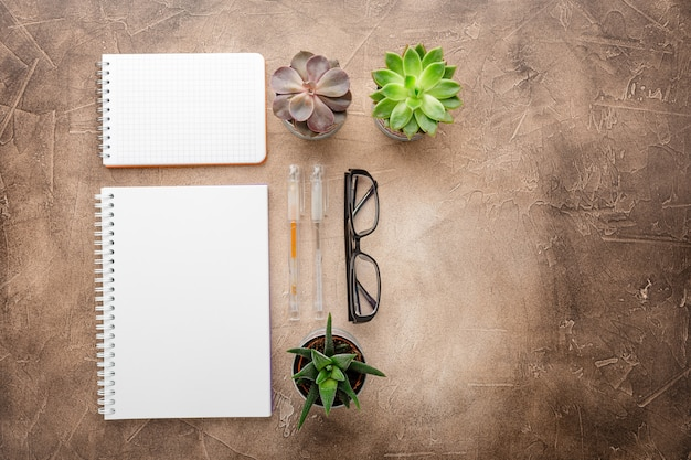 Bloc-notes et plantes succulentes sur la table vue de dessus Photo Premium