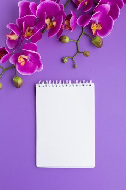 Bloc-notes vide entouré d'orchidées Photo gratuit