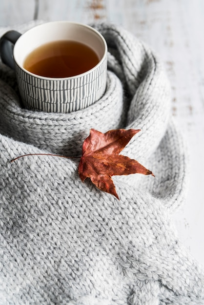 Boire avec foulard gris et feuille sèche Photo gratuit