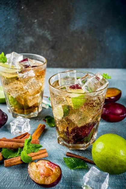 Boisson rafraîchissante glacée d'été. cocktail de limonade à la cannelle et à la prune, citron vert frais et menthe Photo Premium