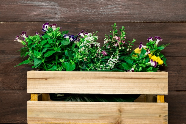 Boîte en bois avec des fleurs de jardin Photo gratuit