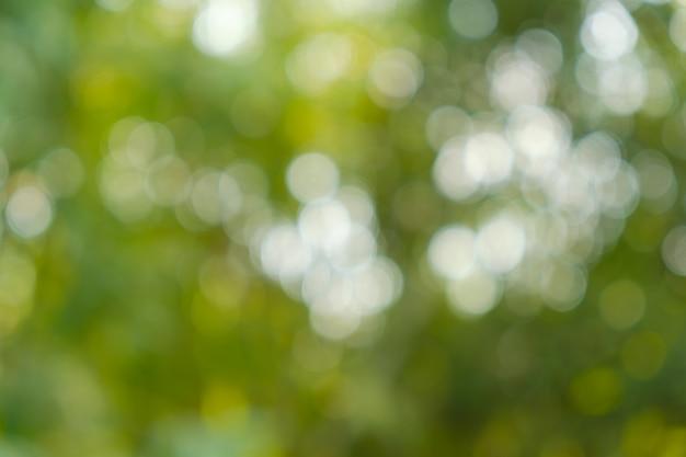Bokeh De Nature Claire, Fond Estompé, De Focus.lumière Scintillante Photo Premium