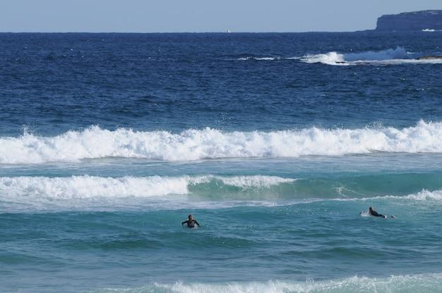 Bondi Beach Et Les Surfeurs à Sydney En Australie Photo Premium