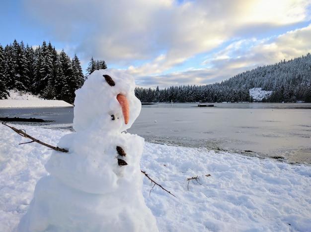 Bonhomme De Neige Déformé Avec Un Lac Gelé Photo gratuit