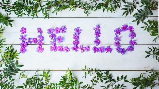 Bonjour mot écrit avec des marguerites violettes et des feuilles. Photo gratuit