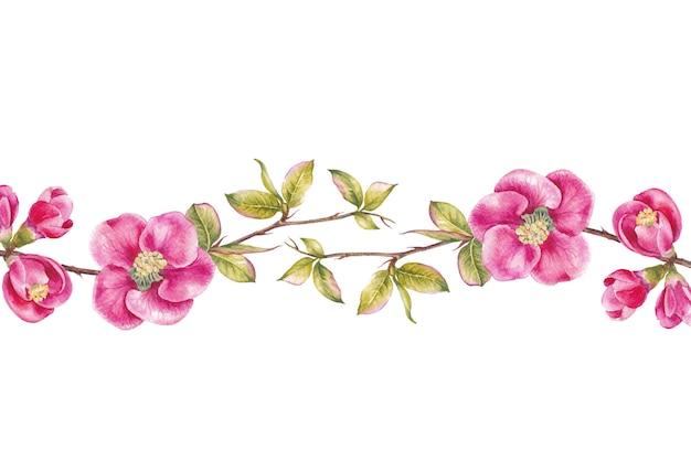 Bordure de fleurs de cerisier rose. Photo Premium