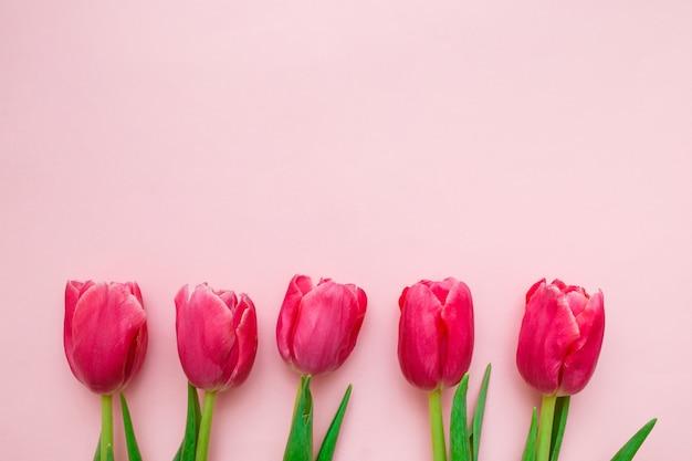 Bordure De Tulipes Roses Sur Rose Photo Premium