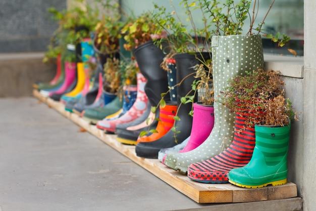Bottes en caoutchouc multicolores en pots de fleurs avec différentes fleurs épanouies dans la véranda Photo Premium