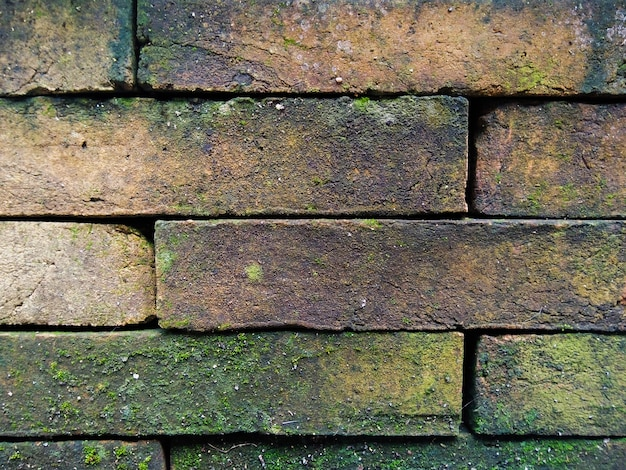 Bouchent vieux fond de mur de brique Photo Premium