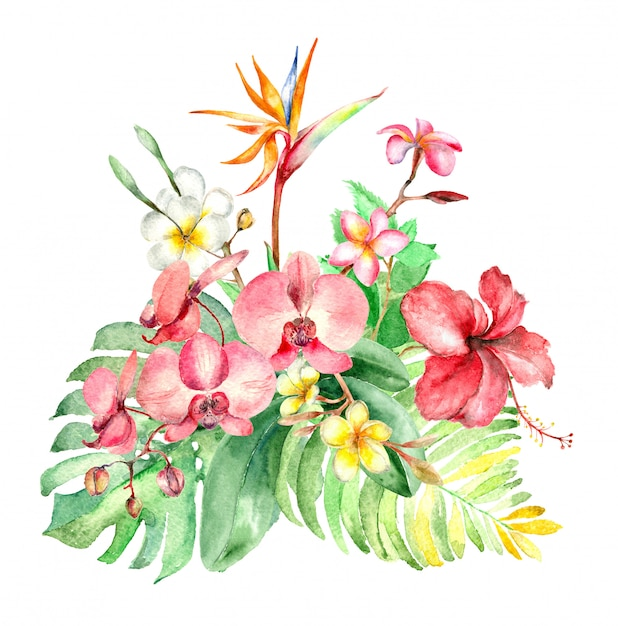 Bouquet aquarelle tropical Photo Premium