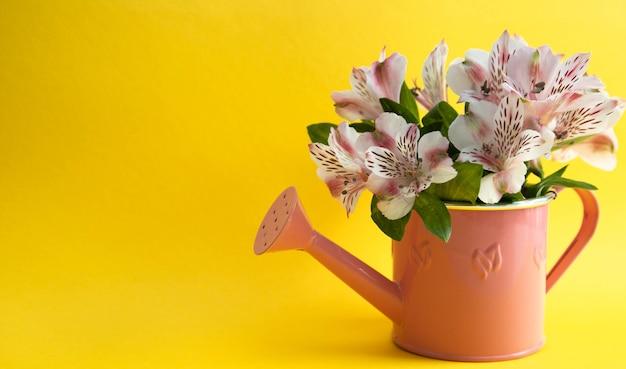 Bouquet d'astromères roses dans un arrosoir Photo Premium