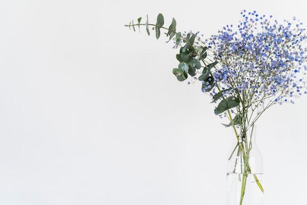 Bouquet de brindilles fraîches et de plantes dans un vase Photo gratuit