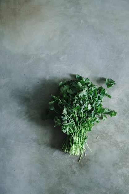 Bouquet de coriandre sur une table en béton Photo gratuit
