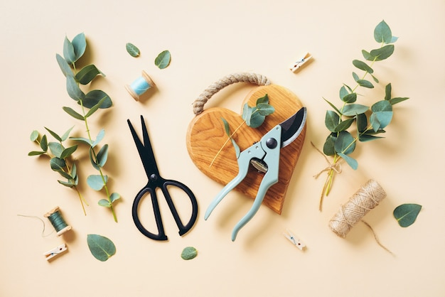 Bouquet d'eucalyptus créant avec des branches d'eucalyptus bleu bébé Photo Premium