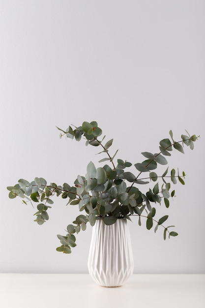 Bouquet D'eucalyptus Photo Premium