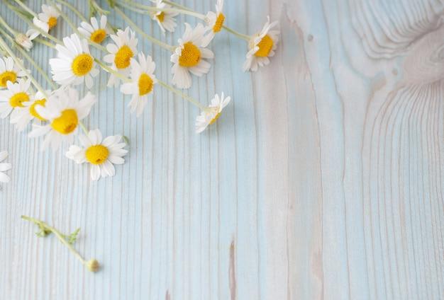 Bouquet de fleurs de camomille fraîchement cueillies sur fond en bois Photo Premium
