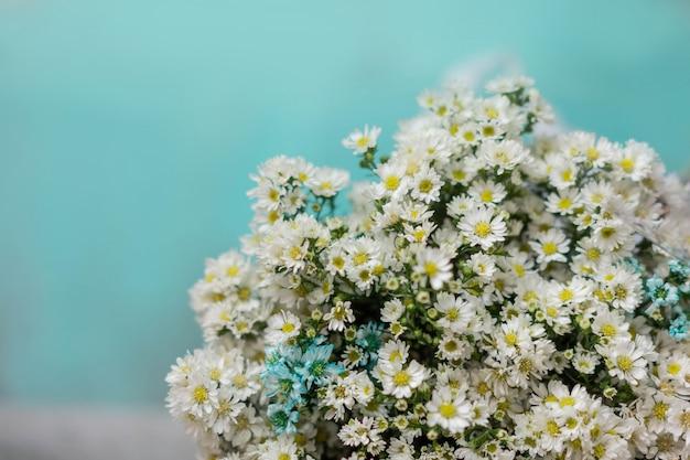 Bouquet de fleurs de marguerites blanches enveloppées dans du papier avec un fond cyan Photo Premium